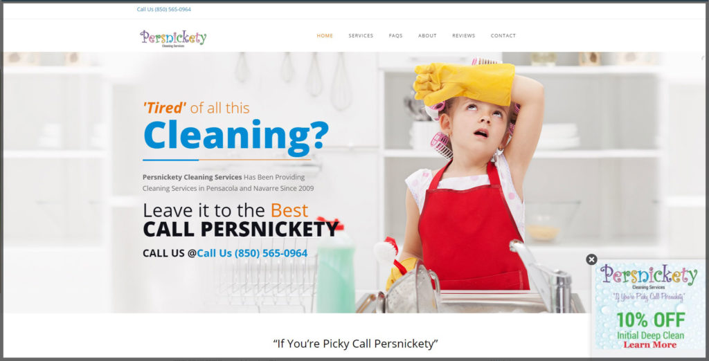 Persnickety Cleaning Services